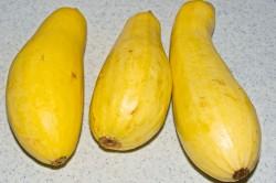 THree Whole Yellow Squash